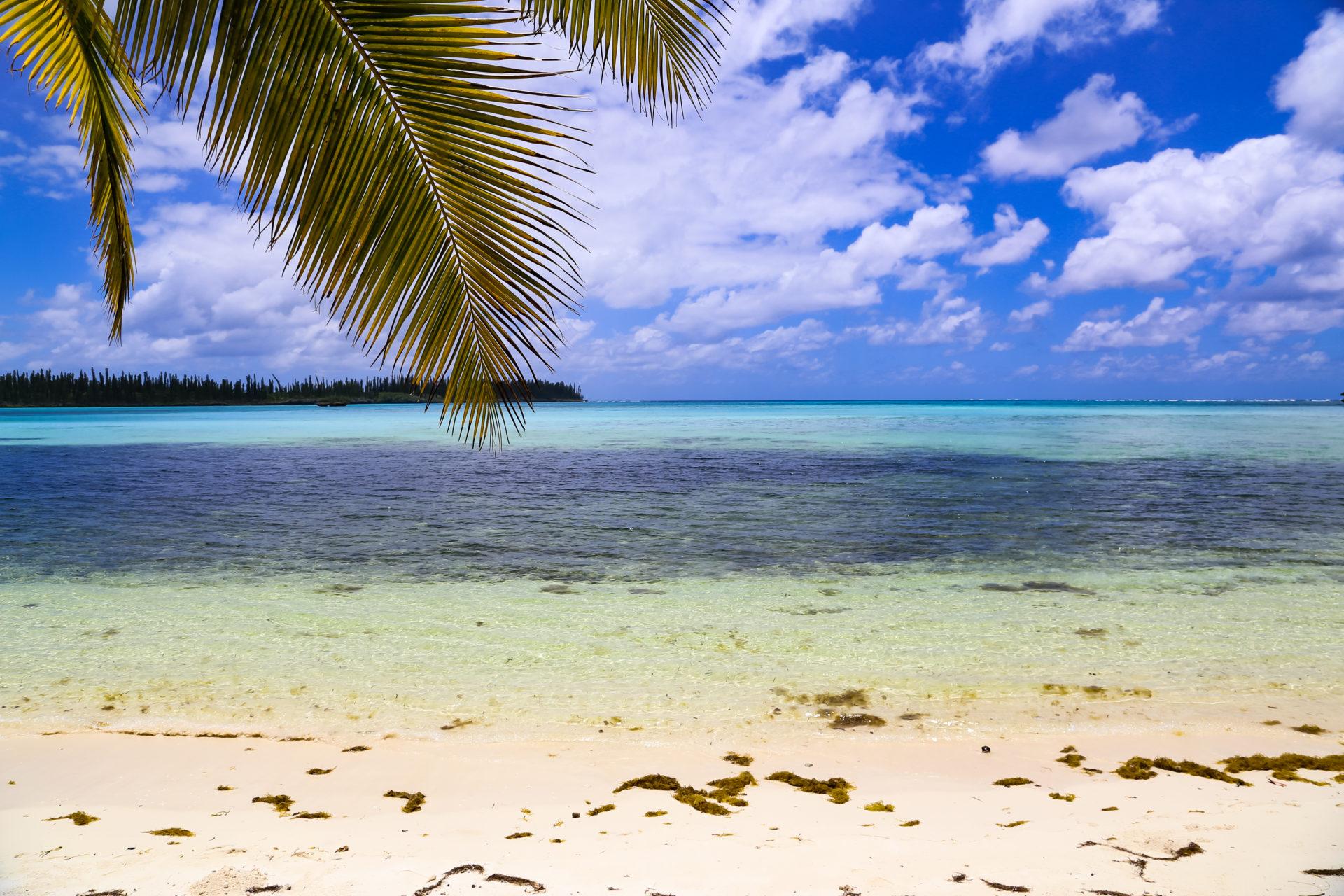 New Caledonia 2013 # 03