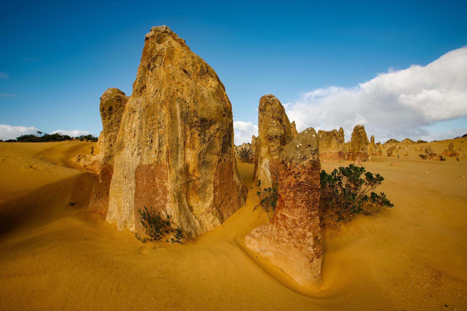 Western Australia 2010 # 06