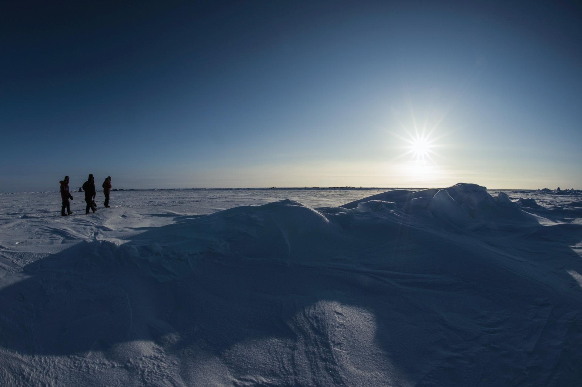 Arctic Polar Ice Cap 2005 # 05