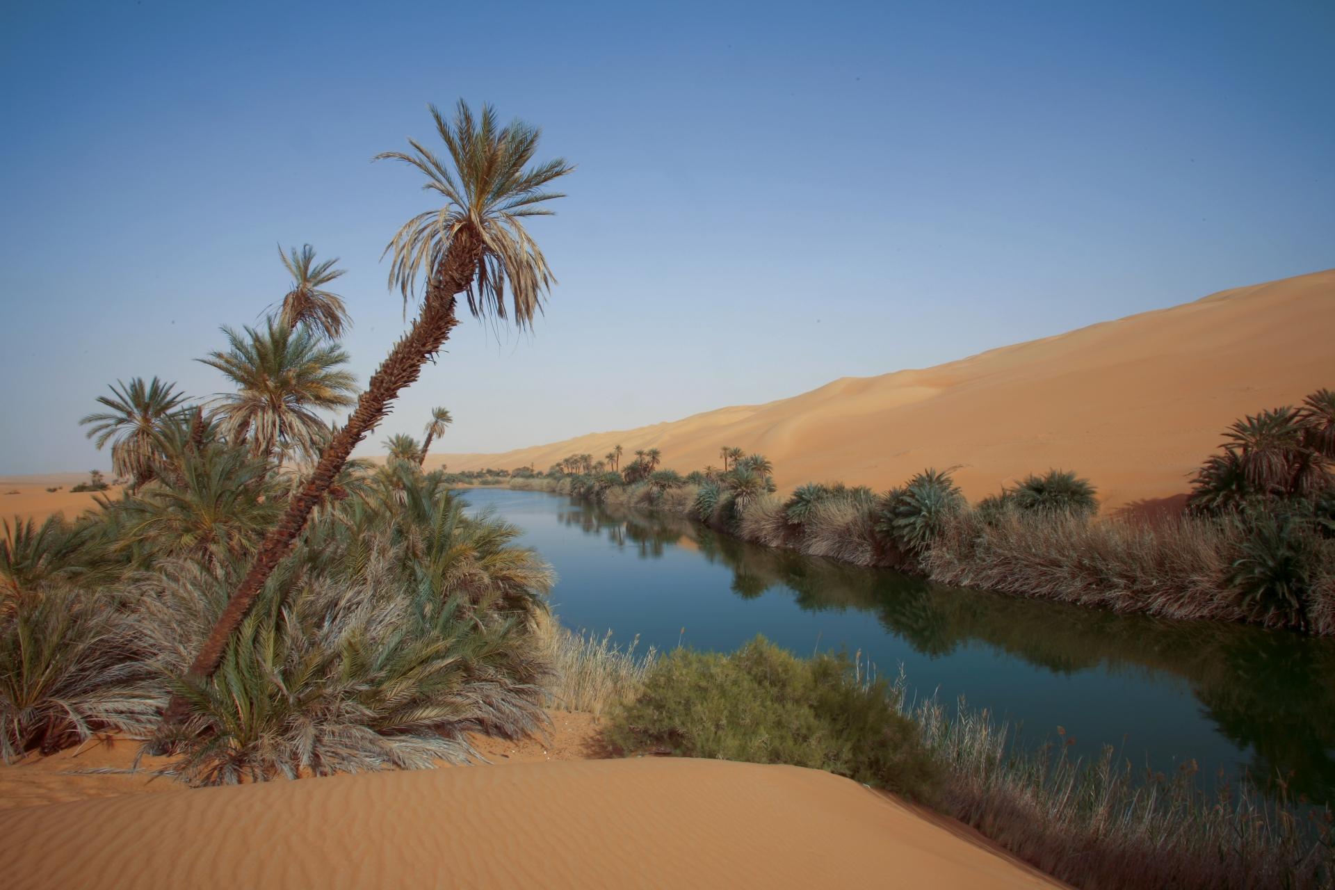 Libya 2007 # 07
