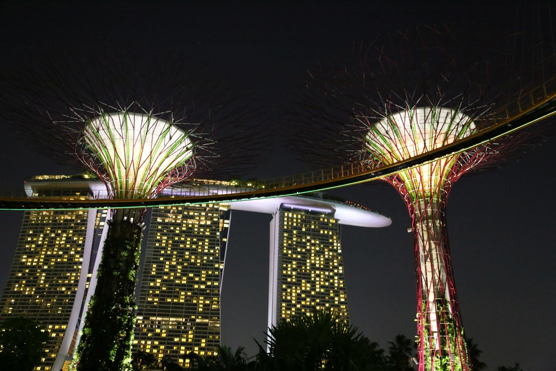 Singapore 2013 # 06